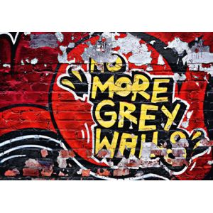 Foto tapet 126 No More Grey Walls 366x254