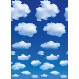 Foto tapet 402 White Clouds 183x254